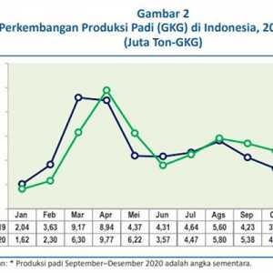 Tunda Impor Beras, Bangkitkan Sektor Pertanian